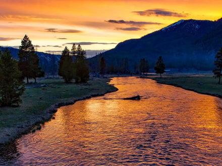 Comment trouver de l'or dans une rivière?